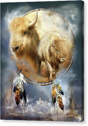 Dream Catcher - Spirit Of The White Buffalo Canvas Print by Carol Cavalaris