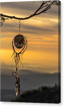 Dream Caught Canvas Print by Peter Tellone