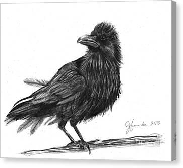 Dream Crow Canvas Print by J Ferwerda