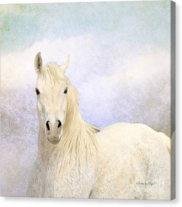 Canvas Print featuring the photograph Dream Horse by Karen Slagle