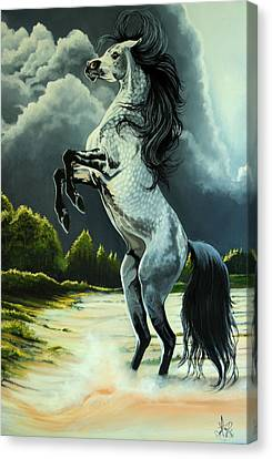 Dream Horse Series 262 - The Lost Stallion Revealed Canvas Print by Cheryl Poland