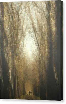 Dream Lane Canvas Print