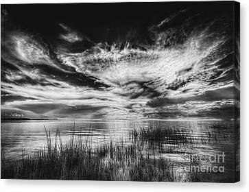 Dream Of Better Days-bw Canvas Print