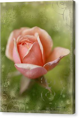 Dream Rose Canvas Print by Bellesouth Studio
