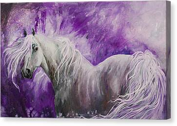 Canvas Print featuring the painting Dream Stallion by Sherry Shipley