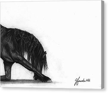 Dreamer Canvas Print by J Ferwerda