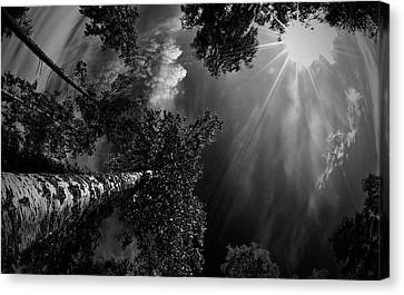 Dreaming Before The Thunder Canvas Print