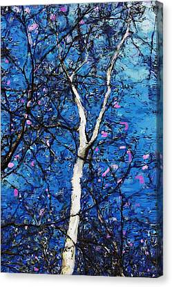 Canvas Print featuring the digital art Dreaming Of Spring by David Lane