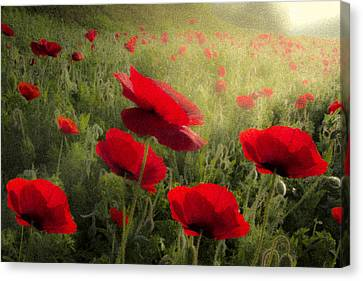 Dreaming Of The Morning Canvas Print by Debra and Dave Vanderlaan