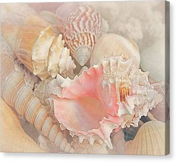 Dreaming Of The Seashore Canvas Print by Elizabeth Budd
