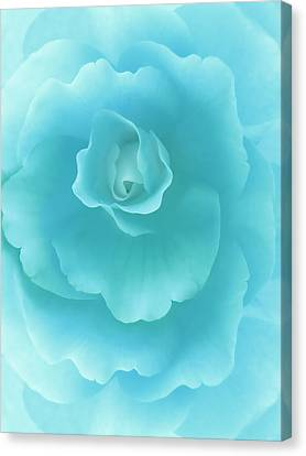 Blue Begonia Canvas Print - Dreaming Teal Begonia Floral by Jennie Marie Schell