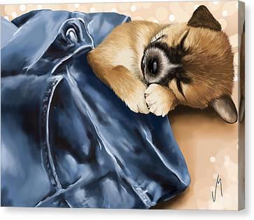 Dreaming Canvas Print by Veronica Minozzi