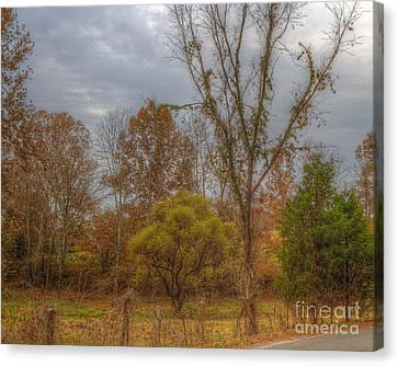 Hdr Landscape Canvas Print - Dreams Of Autumn by Sherri Duncan