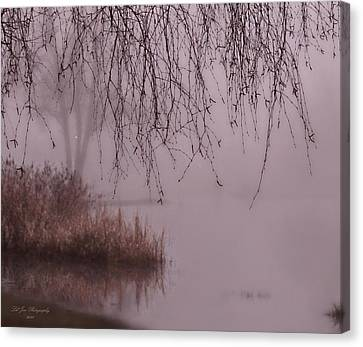 Dreams Of The Heart Canvas Print by Jeanette C Landstrom