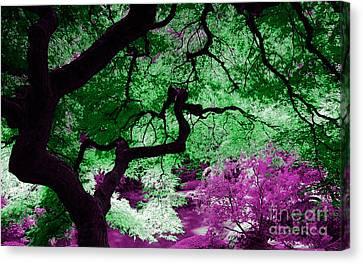 Dreamscape Canvas Print by Marvin Blaine