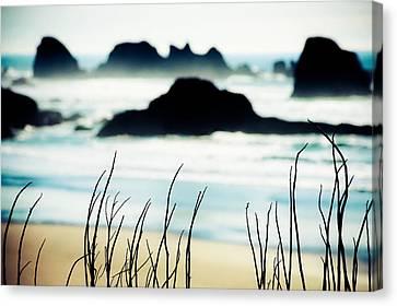 Dreamy Beach Canvas Print by Debi Bishop