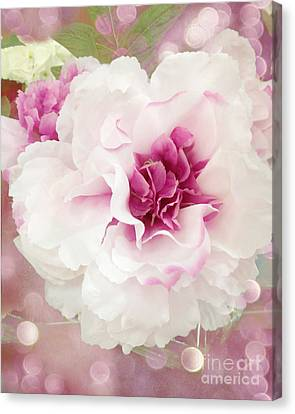 Dreamy Cottage Shabby Chic Pink And White Soft Ethereal Fluffy Rose Floral Art Impressionistic  Canvas Print by Kathy Fornal
