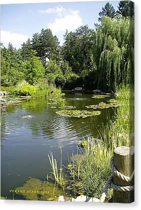 Dreamy Pond Canvas Print