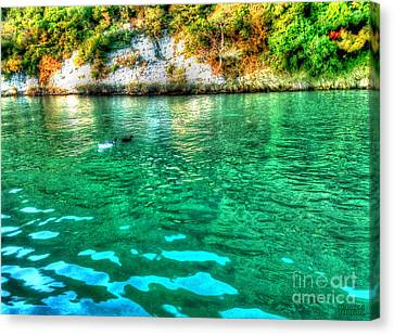 Canvas Print featuring the photograph Dreamy River by Hanza Turgul