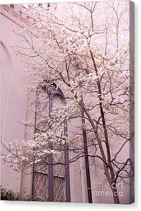 Dreamy Savannah Church Window Pink Trees  Canvas Print by Kathy Fornal