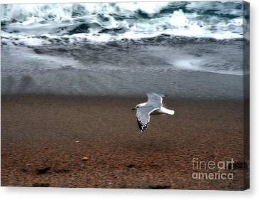 Dreamy Serene Ocean Waves Coastal Scene Canvas Print