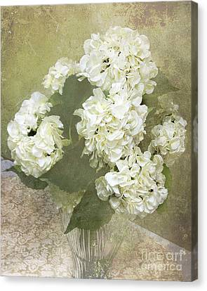 Dreamy Vintage Cottage Chic White Hydrangeas - Shabby Chic Dreamy White Floral Art  Canvas Print by Kathy Fornal