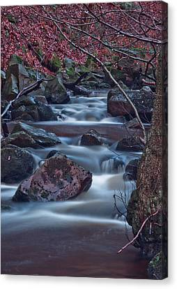 Dreamy Water  Canvas Print by Brendan Quinn