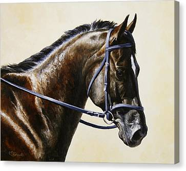 Bay Horse Canvas Print - Dressage Horse - Concentration by Crista Forest
