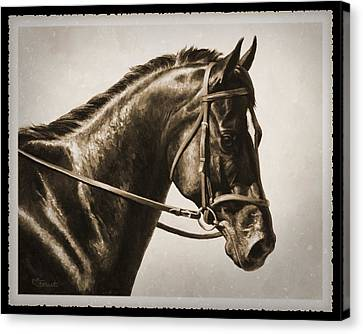 Dressage Horse Old Photo Fx Canvas Print