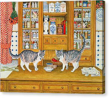 Dresser Cats Canvas Print by Ditz