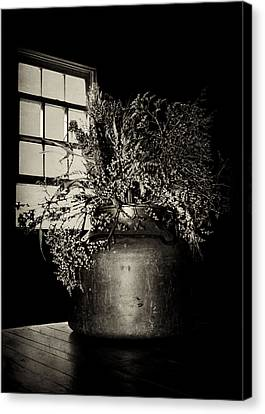Dried Arrangement - Window Light Canvas Print