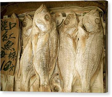 Canvas Print featuring the photograph Dried Fish by Colleen Williams