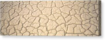 Dried Mud Death Valley Ca Usa Canvas Print by Panoramic Images
