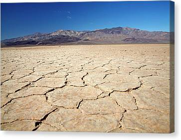 Panamint Valley Canvas Print - Dried Mud In Salt Pan, Panamint Valley by David Wall