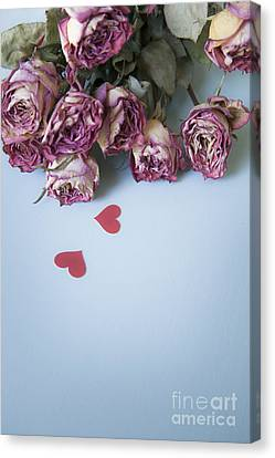 Dried Roses With Paper Hearts Canvas Print by Jan Bickerton