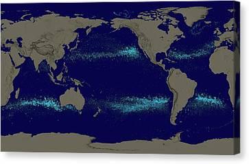Drifting Ocean Garbage Canvas Print