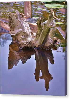 Drifting Reflections Canvas Print by Mary Zeman