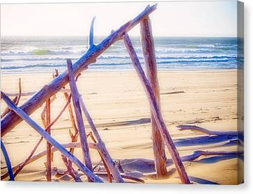 Canvas Print featuring the photograph Driftwood 2 by Adria Trail