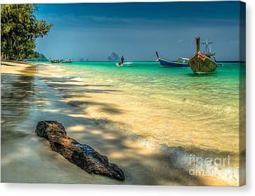 Driftwood Canvas Print by Adrian Evans