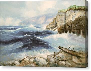 Driftwood Cliffs Canvas Print by Richard Hinger