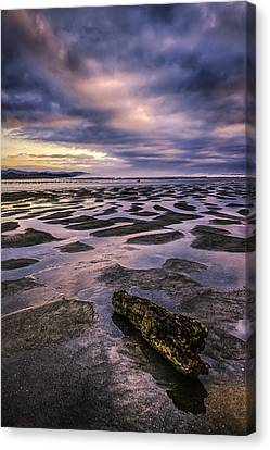 Driftwood Sunset Canvas Print by Colby Drake
