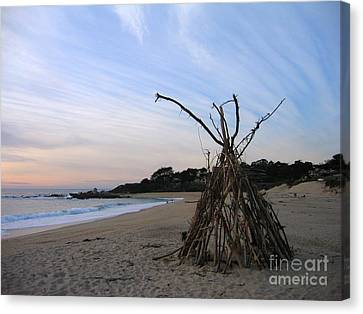 Driftwood Tipi Canvas Print by James B Toy
