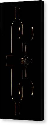 Drink Reflected Canvas Print by Andrew Soundarajan