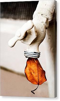 Drip Leaf Canvas Print by Bobbi Feasel