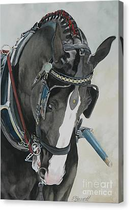 Draft Horse Canvas Print - Driven by Patricia Brandt