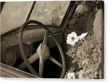 Driving Flowers Canvas Print