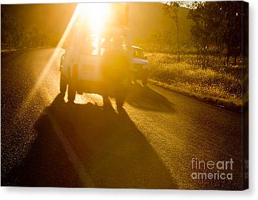 Driving Into The Sun Canvas Print by Colin and Linda McKie