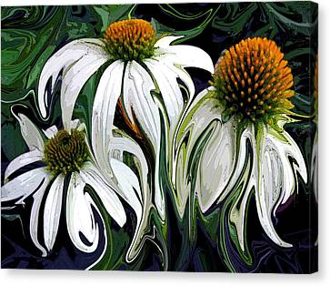 Abstracted Coneflowers Canvas Print - Droopy Daisies by Suzy Freeborg
