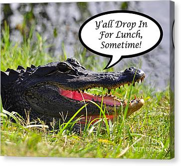 Drop In For Lunch Greeting Card Canvas Print by Al Powell Photography USA