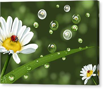 Drops Of Spring Canvas Print